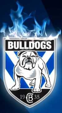 Bulldogs Wallpaper Iphone
