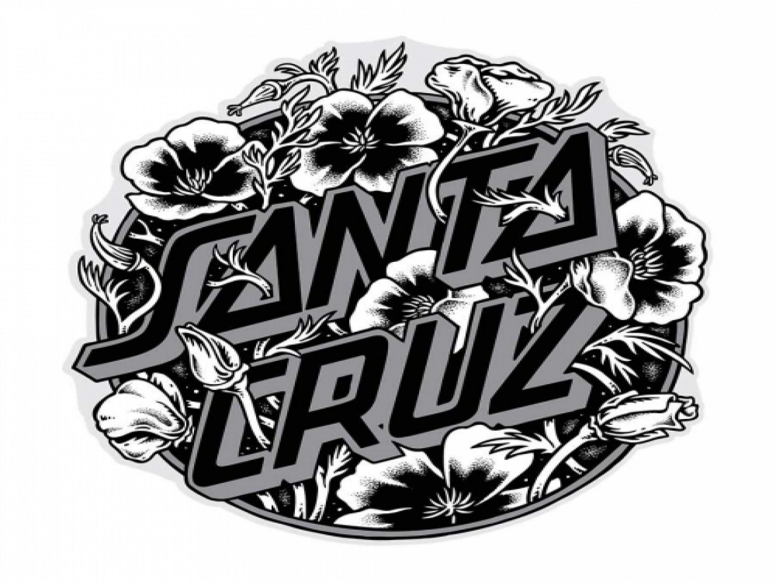 Santa Cruz Wallpaper Desktop
