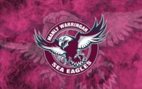 Sea Eagles Hd Wallpaper