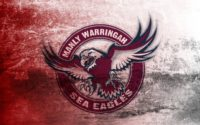 Sea Eagles Wallpaper