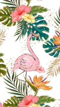Flamingo Wallpaper Iphone