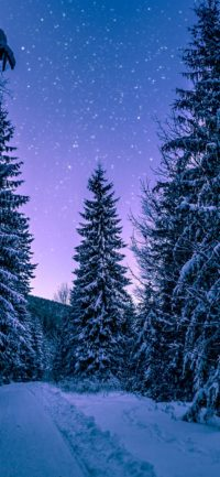 Iphone Winter Wallpaper