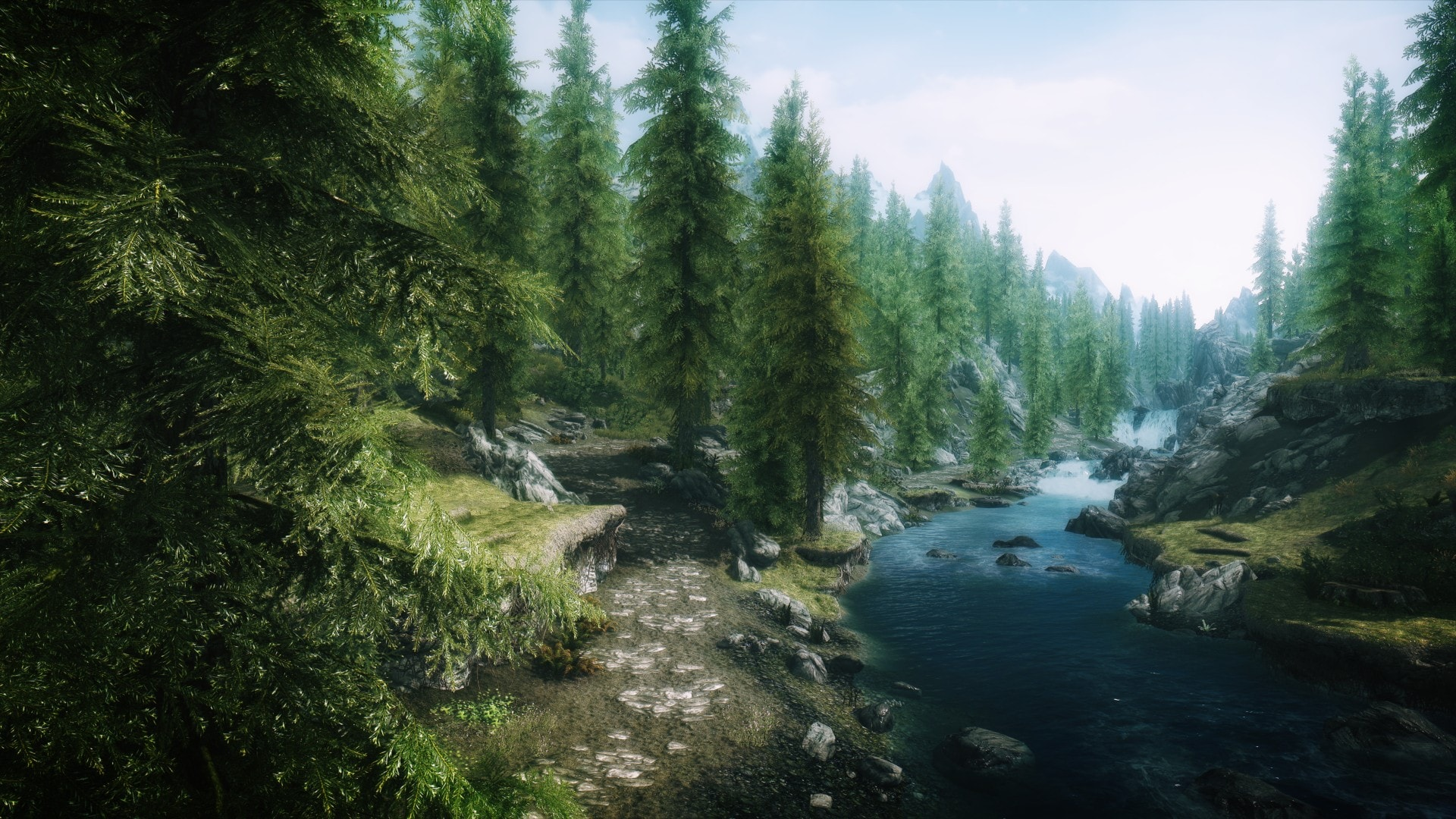 Skyrim Forest Wallpaper