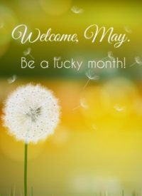 Welcome May Wallpaper 2