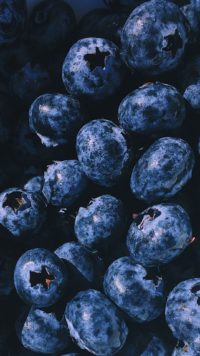 Blueberry Iphone Wallpaper 3