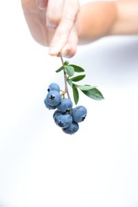 Blueberry Wallpaper Android