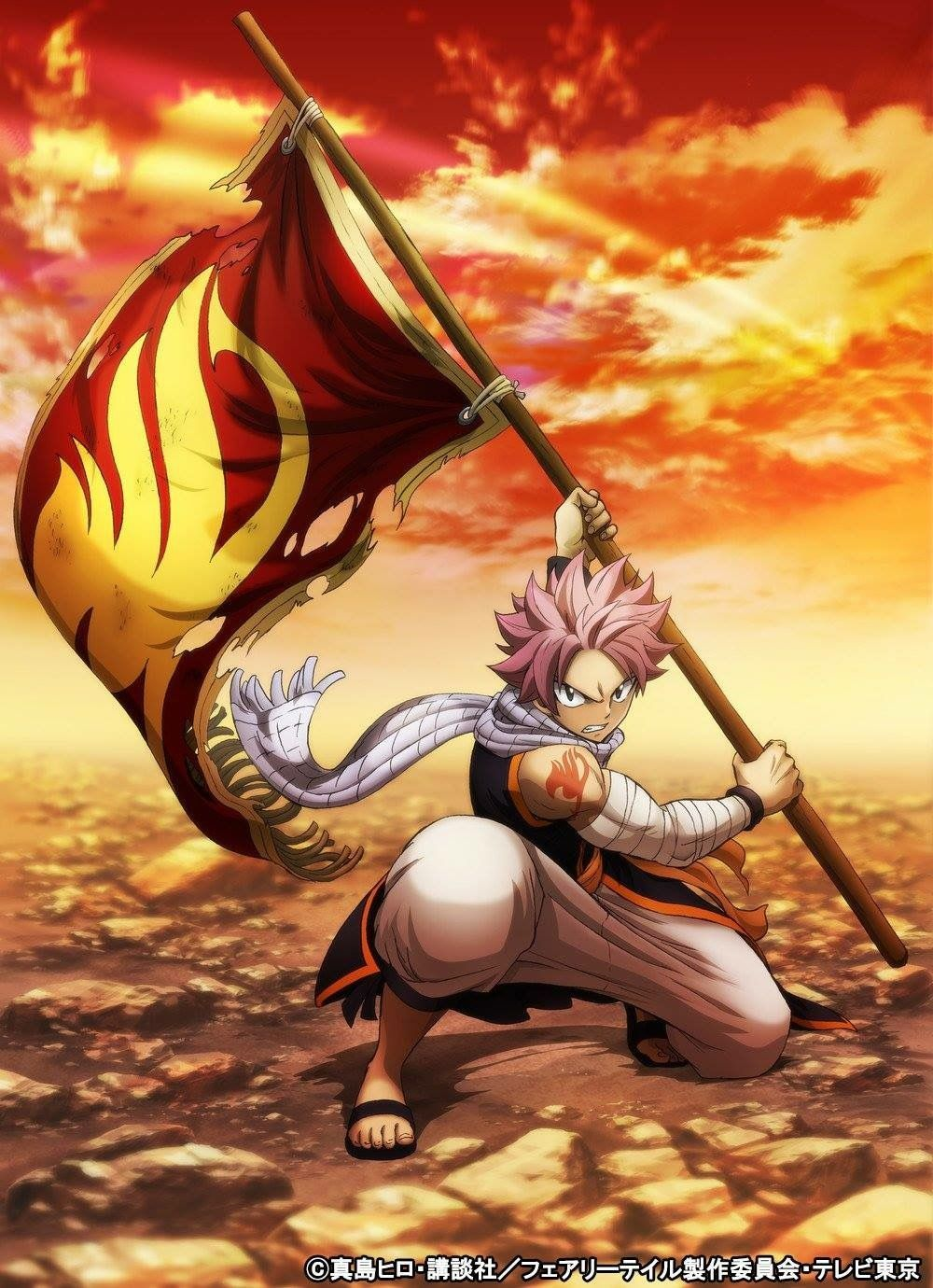 Fairy Tail Flag Wallpapers