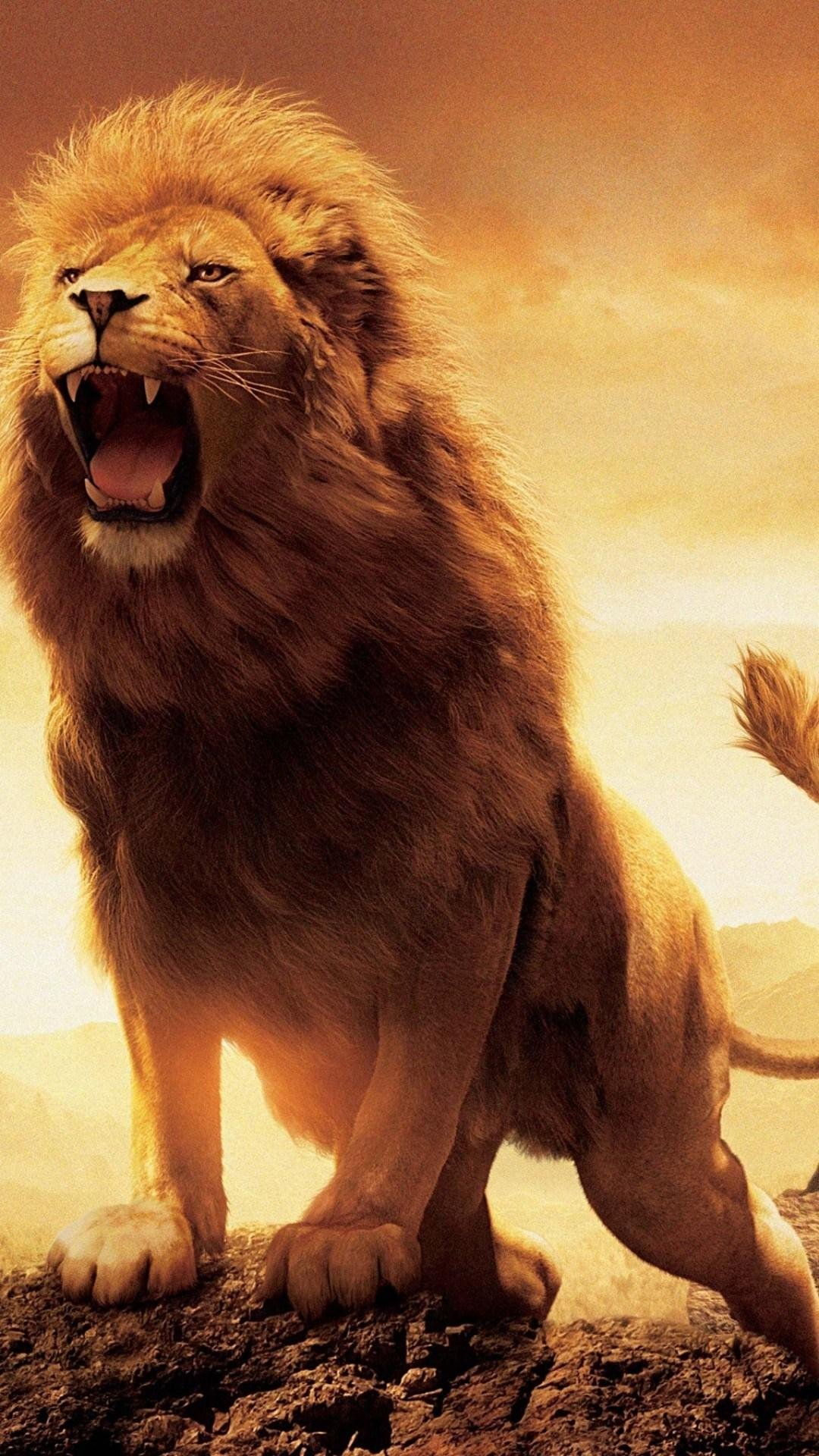 Lion Roaring Wallpapers Kolpaper Awesome Free Hd Wallpapers