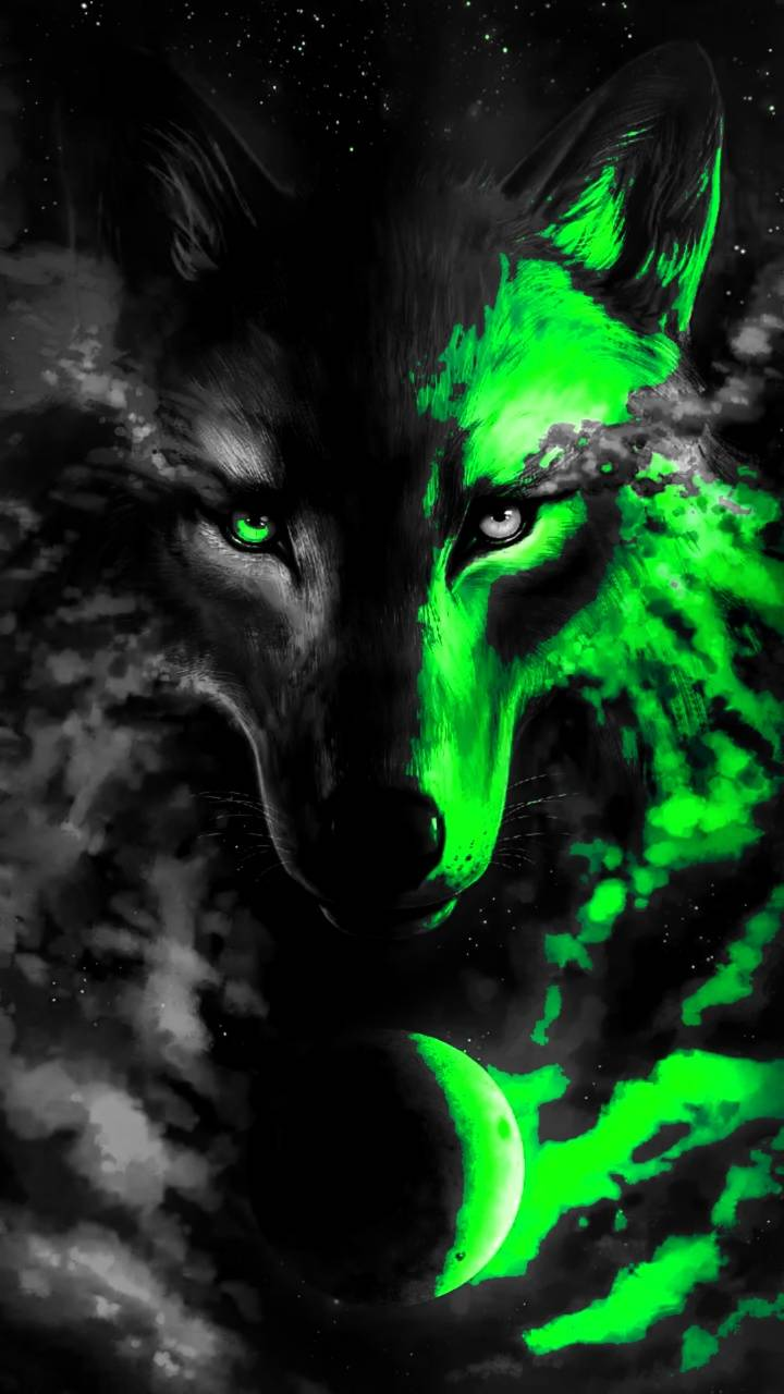 Wolf Iphone Wallpaper 3