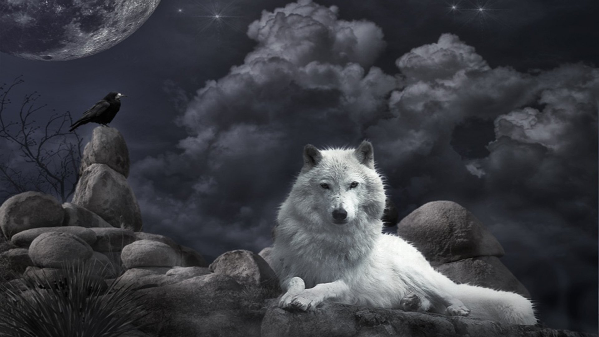 Wolf Landscape Wallpaper