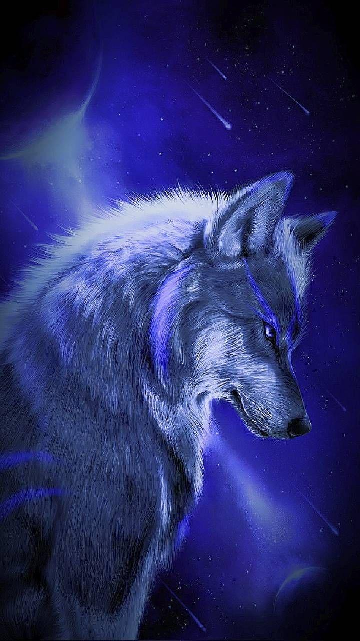 Wolf Night Wallpaper - KoLPaPer - Awesome Free HD Wallpapers