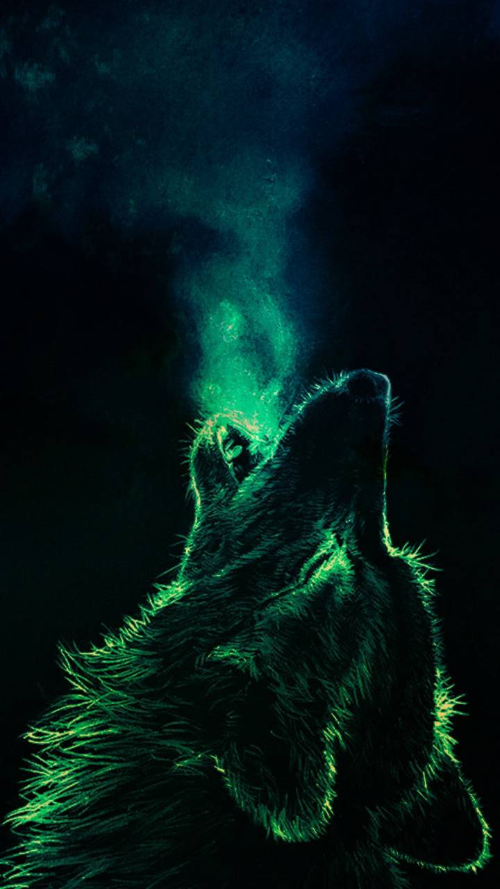 Wolf Wallpaper Iphone 2