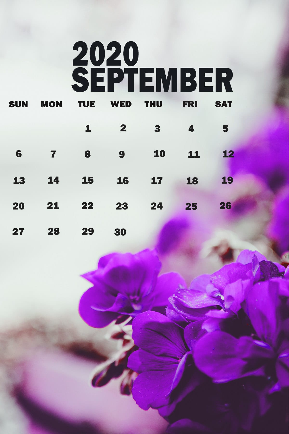 2020 September Wallpapers Kolpaper Awesome Free Hd Wallpapers