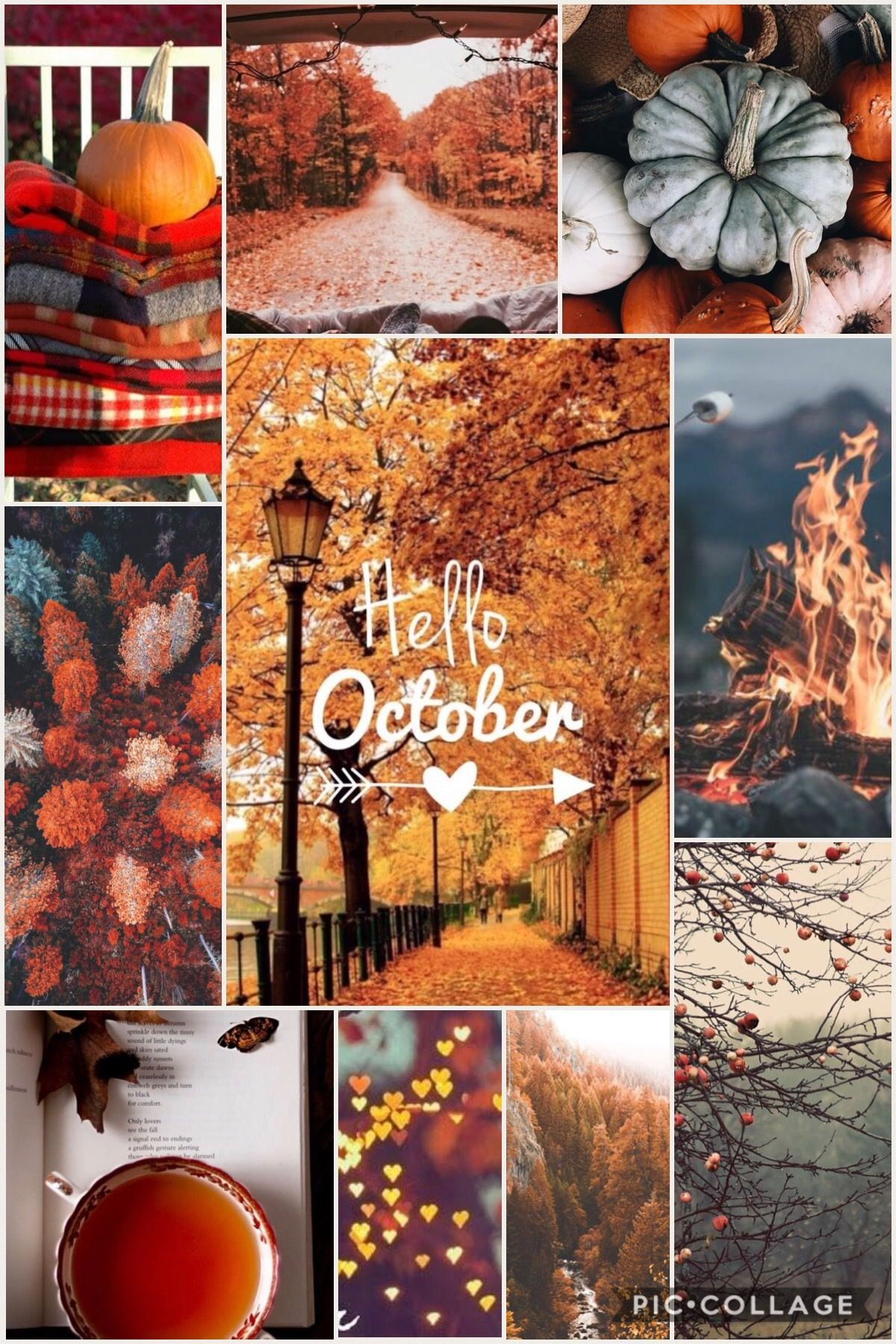 Cute October Wallpapers Kolpaper Awesome Free Hd Wallpapers