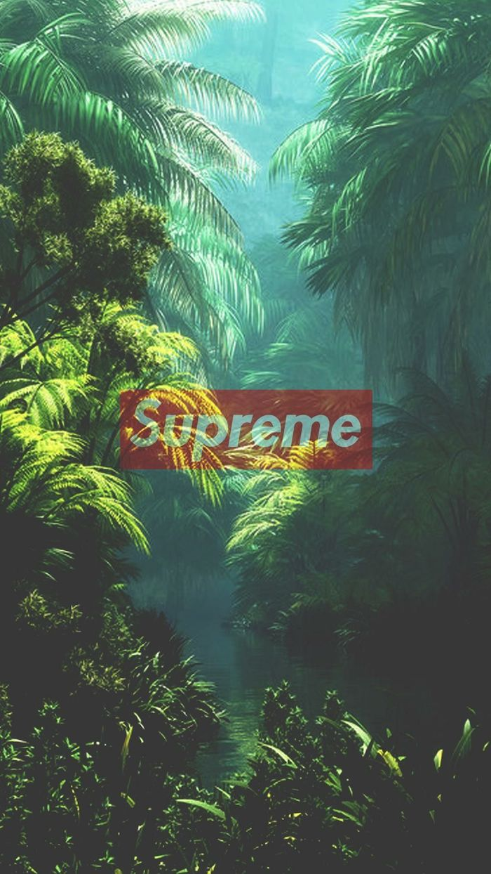 Supreme Forest Wallpaper