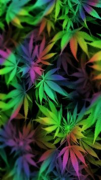 Weed Wallpaper Android