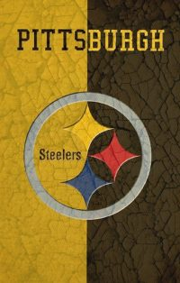 Pittsburgh Steelers Wallpaper 8
