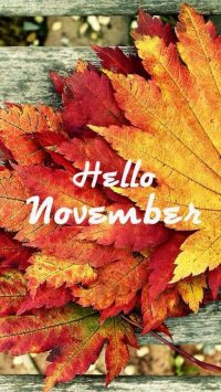 Wallpaper Hello November