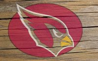 Arizona Cardinals Wallpaper 13