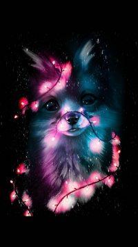 Cute Fox Wallpaper 8