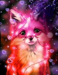 Fox Cute Wallpaper