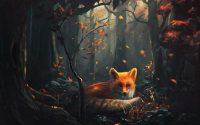 Fox Wallpaper Desktop