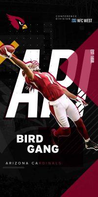 NFL Arizona Cardinals Wallpaper 2