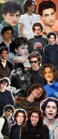 Timothee Wallpapers