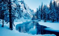 Winter Wallpaper 5