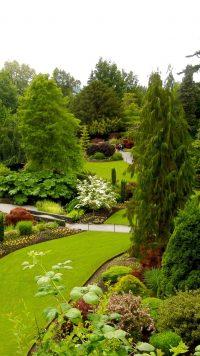 iPhone Garden Wallpaper