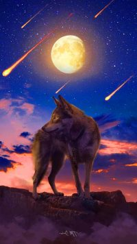 Cool Wolf Wallpaper 13