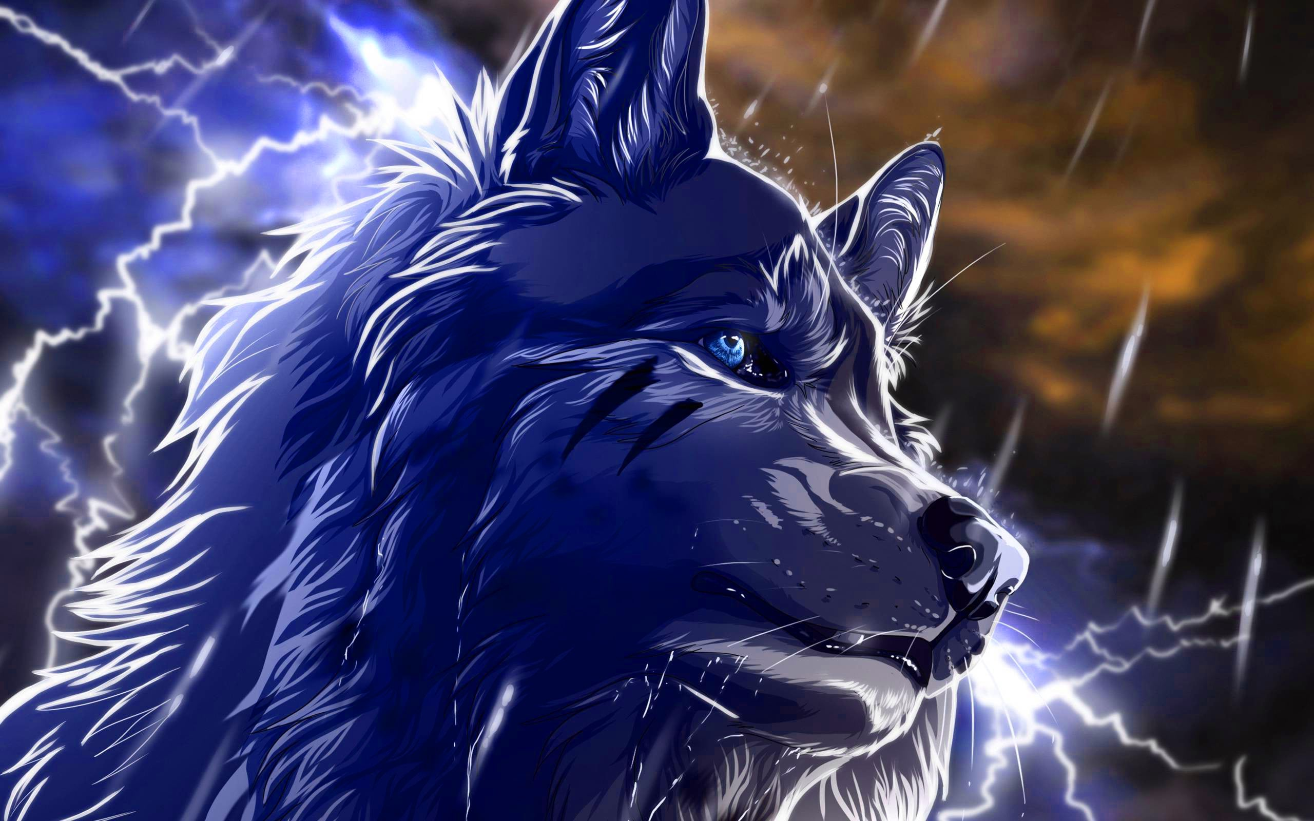Cool Wolf Backgrounds For Computer