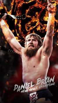 Wwe Wallpaper 9