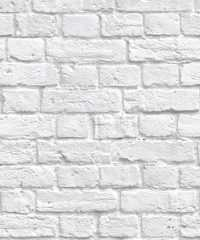 White Wallpaper 2