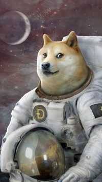 DogeCoin Wallpaper iPhone 4