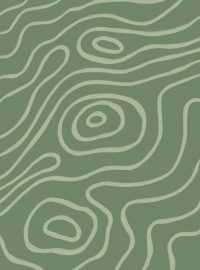 Sage Green Aesthetic Wallpaper 9