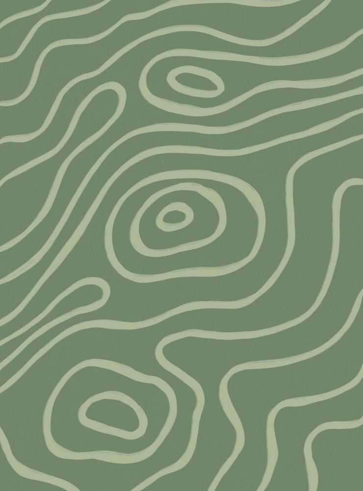 Sage Green Aesthetic Wallpaper 1