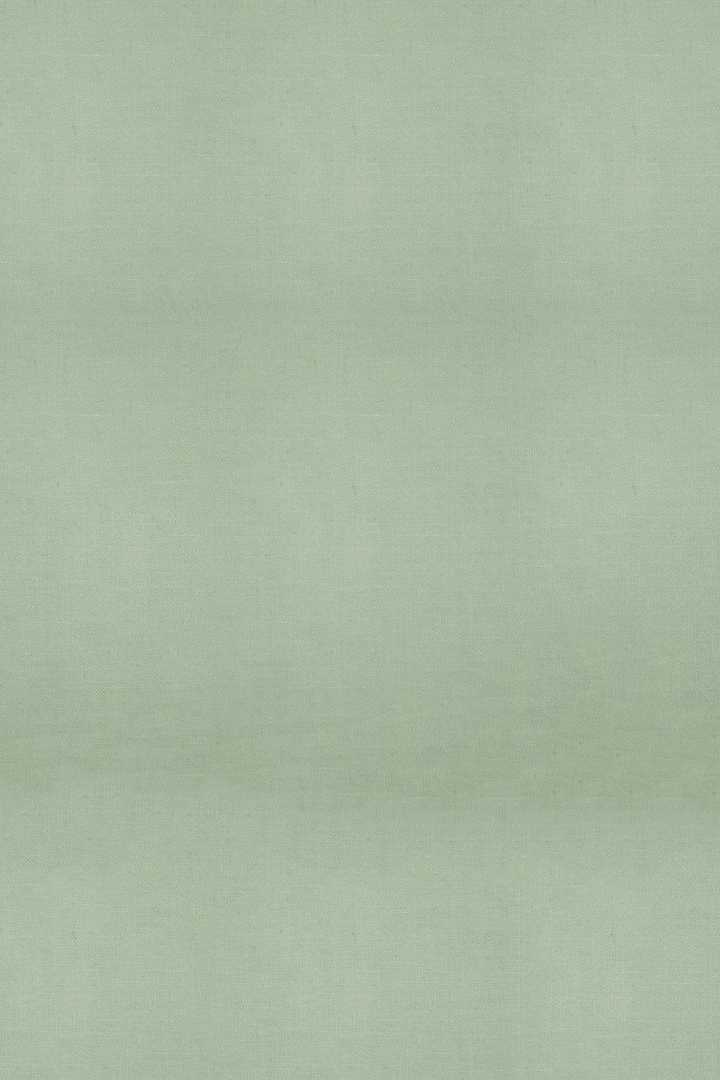 Sage Green Wallpaper 1
