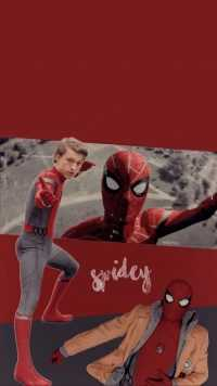 Tom Holland Wallpapers 5