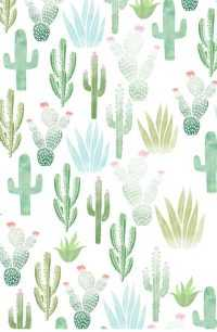 Cactus Wallpaper Android 2