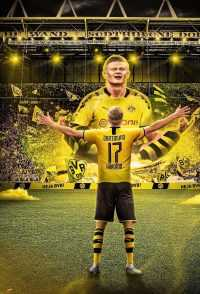 Haaland Dortmund Wallpapers 3